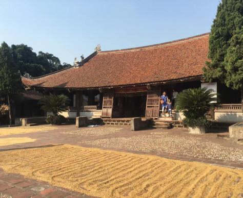 Domestic short trip / Duong Lam village